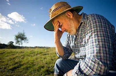 a farmer thinking